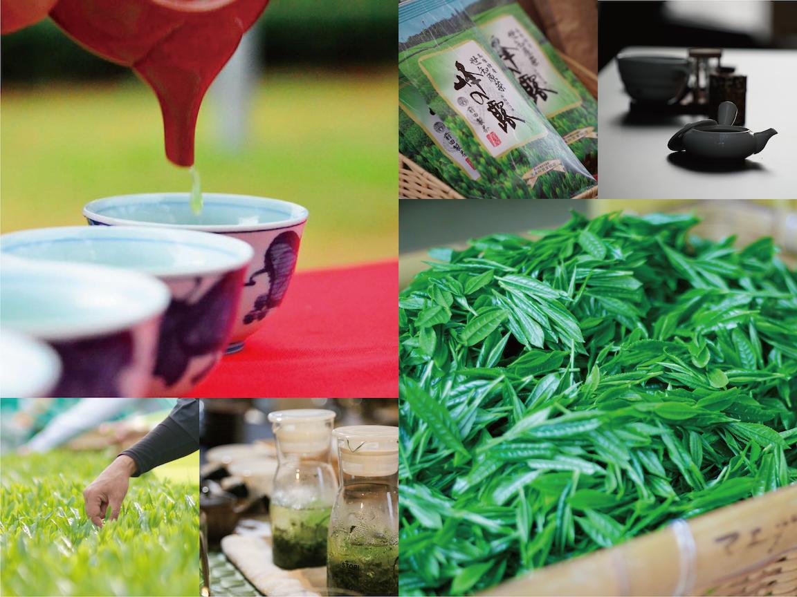 美味しい世知原茶をお届けする前田製茶です